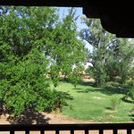 Looking from room onto balcony and out to cottonwood trees.