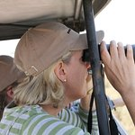 Safaris-R-Us - Day Tours-billede