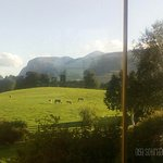 View from my room at the Dunloe.