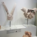 Heraklion Archaeological Museum Foto