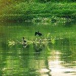 Punnamada Lake & Surroundings