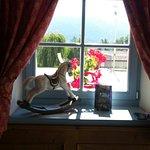 Foto de La Quiete Resort