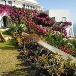 Photo of Hotel Punta Scario