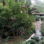 Photo of Elephant Rock Cottage