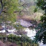 Фотография Kruger Park Lodge