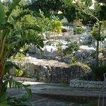 giardino roccioso di Loggia dell'Acanto
