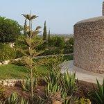 Une vue latérale du jardin