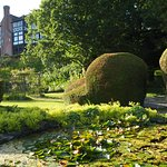just a pretty photo from the private lily pond on a pleasant evening