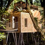 the woodsman treehouse