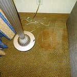Photo de Embassy Suites by Hilton Hotel Kansas City - Plaza