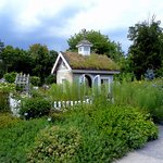 The have children's gardens and sheds with green roofs.