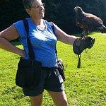 West of England Falconry