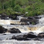 The Falls of Dochart - an easily to reach local attraction you can't miss.