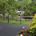 Paved and landscaped