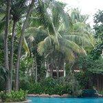 The lagoon pool - very nice!!!