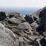 Foto de Mount Monadnock State Park
