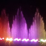 20160828_221638_large.jpg