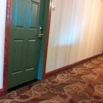 Nice carpeting in halls and well kept building.