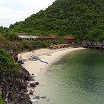 Halogen Bay