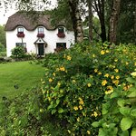 Lissyclearig Thatched Cottage-bild