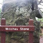 Blarney Castle & Gärten Foto