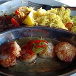 Sea Scallops with saffron rice