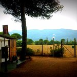 Photo de Camping Giannella