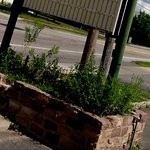 Flower bed loaded with weeds is a bad sign for a restaurant food quality