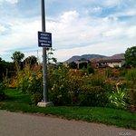 McArthur Island Park Foto