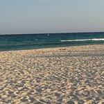 Foto de Sandos Playacar Beach Resort