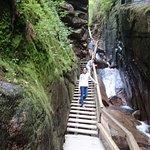 Flume Gorge trail