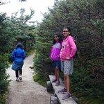 Rim trails , canon mountain summit