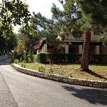 Photo de Century Resort