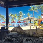 Musket Cove Island Resort-bild