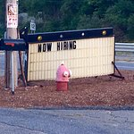 Now hiring a pink fire hydrant