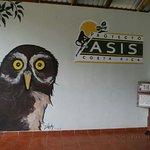 Foto de Proyecto Asis