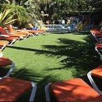 Photo de Ocean Palms Beach Resort
