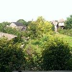Photo de Tree Top Bungalows