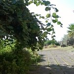 Photo of Agriturismo Biologico dell' Etna