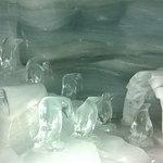Zdjęcie Jungfraujoch