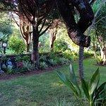 Une vue partielle du jardin de la Quinta de las Acacias
