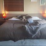 Zdjęcie Maleny Luxury Cottages