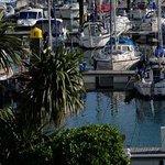 Picturesque Marina Views