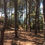 Camping Pola Foto