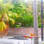 From the porch, directly across from Hemingway House.