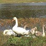 Photo de Hatchet Pond near Beaulieu
