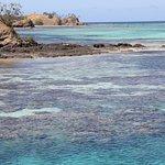 Bilde fra Blue Lagoon Beach Resort