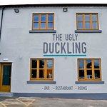 Zdjęcie The Ugly Duckling