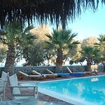 View of the pool lined with palm trees. Free breakfast is served daily until 10:30 am.