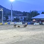 Photo de Jackson Hole Rodeo Grounds
